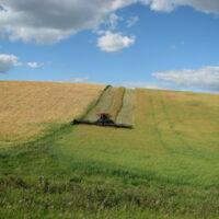 RLBR Farming