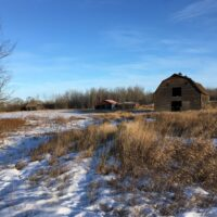 Old Farmyard RLBR
